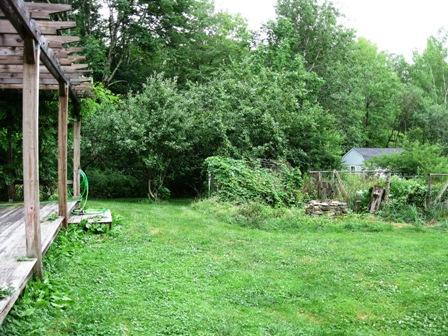 Orchard/Yard